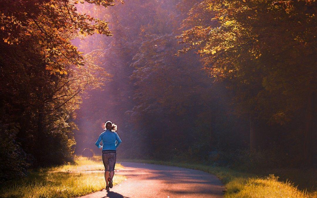 Walking am Samstag – Neues Angebot des HSVO